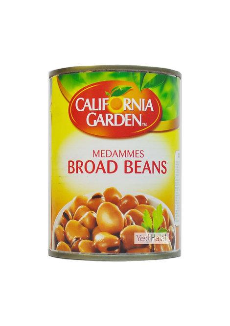 Medammes Broad Beans
