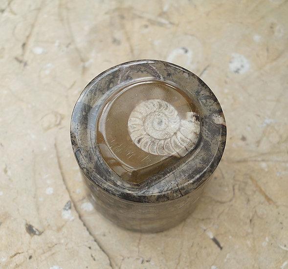 Fossilstone Box