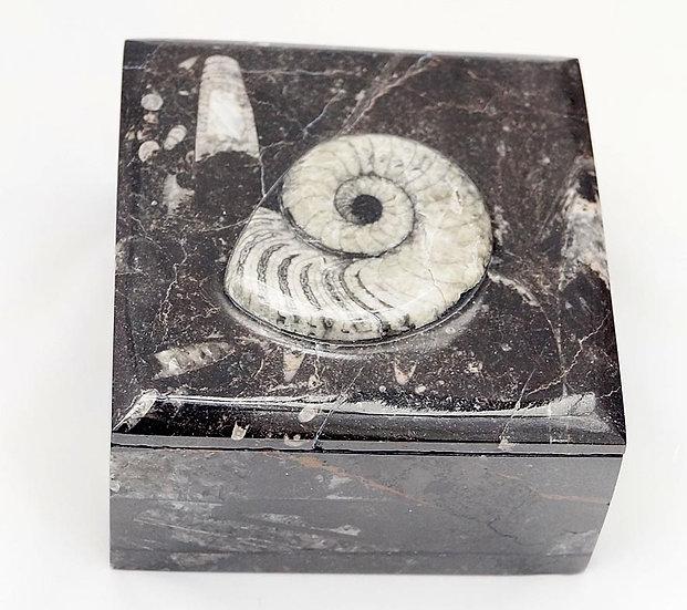 Fossilstone box  (fb2)
