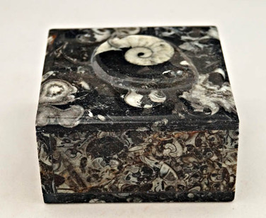 Fossilstone Boxes