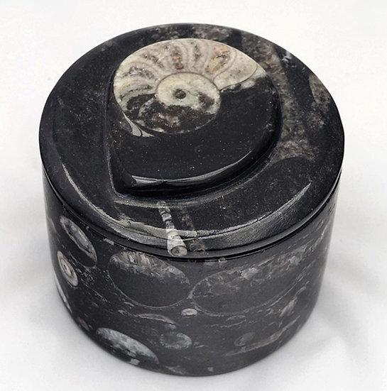 Fossilstone Box   (fb3)