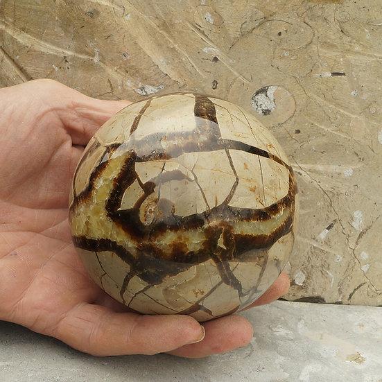 Septarian sphere
