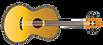 השרביט-כגיטרה.png