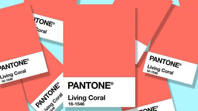 Living Coral: Saiba tudo sobre a cor do ano 2019
