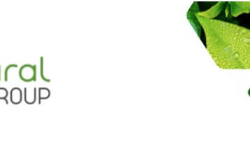 Nathural Group lança vernizes anti-Covid com barreira a umidade e gordura
