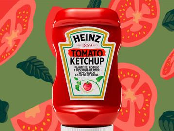 Primeiro tomate: Heinz lança edição especial de ketchup com rótulo plantável