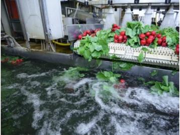 Indústrias de alimentos e bebidas devem adotar urgentemente melhores práticas para o uso de água