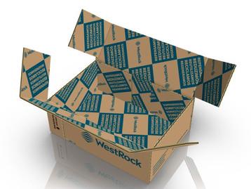 """WestRock desenvolve solução de embalagem """"right size"""" para e-commerce"""