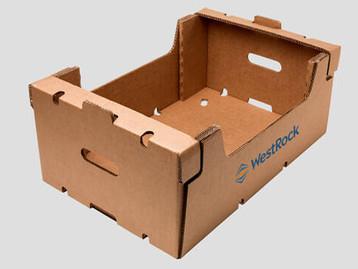 Embalagens WestRock aproximam produtos e consumidores no ponto de venda