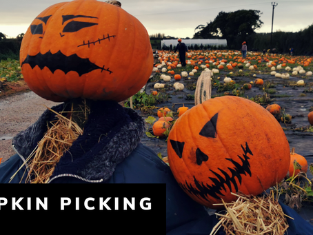 Where to find the best Pumpkin patch near Blackpool