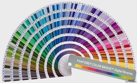 Pantone-1024x623.jpeg