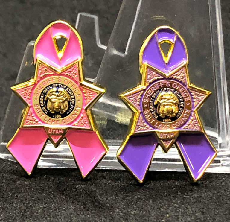 Breast Cancer_Domestic Violence pins