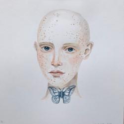 Moth (12x12) [2020]