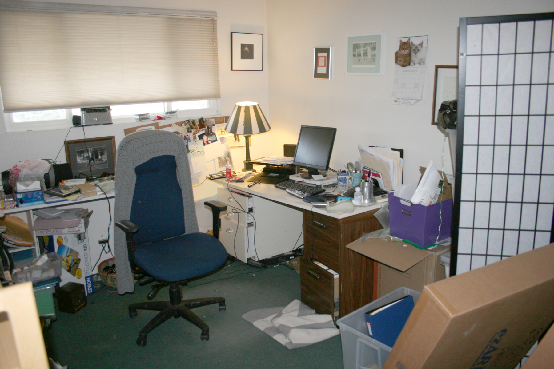 HOME OFFICE — BEFORE