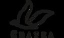 chayka_logo_hor_300x180_24bit.png