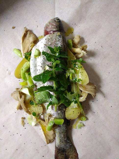 Trout in a Pouch before the oven