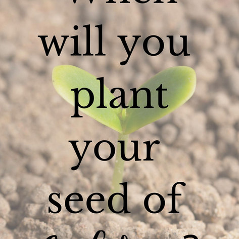 When will you plant your seed of confide