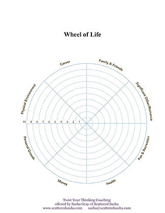 TYT Wheel of Life - Wheel.jpg