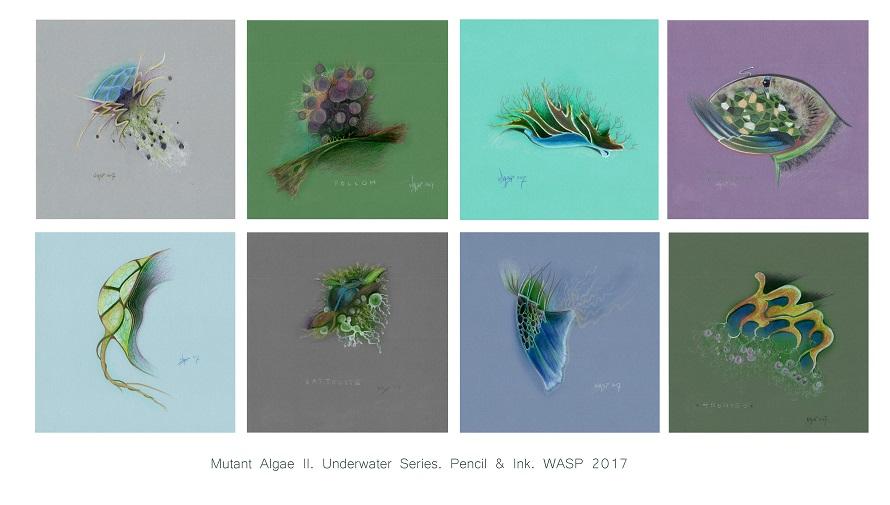 Mutant Algae compilation 1
