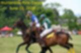 PoloClassicSaveThe Date.jpg