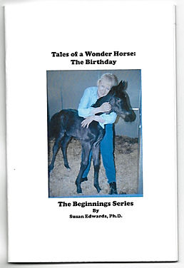 Wonder Horse book cover (2).jpg