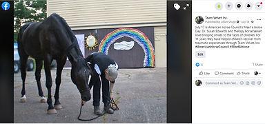 Facebook Post Meet A Horse 2020.jpg