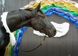 Velvet In Fron Of Rainbow.jpg