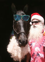 Santa and Velvet no drink.jpg