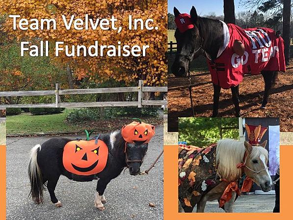 team velvet fundraiser collage3.jpg