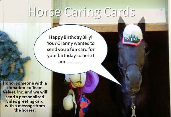 Horse Caring Cards promo.jpg