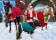Santa closeup with herd (2).jpg