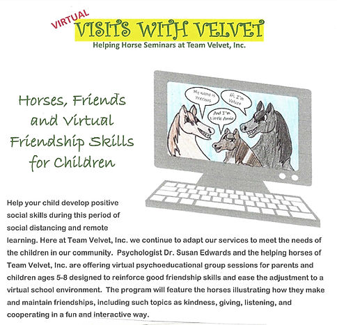 Virtual Visits with Velvet Friendship Gr