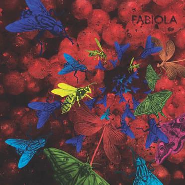 Artist : Fabiola Single : You Crazy Diamond (Kosmow Diskow Remix Role : Mixer Label : Dear deer records Year : 2021