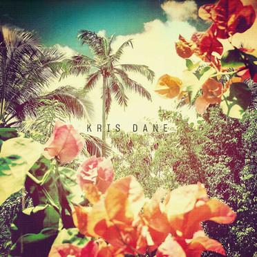 Artist : Kris Dane Album : U.N.S.U.I. Role : Recording Engineer Label : MBE/Pias Year : 2018