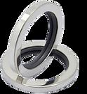 PTFE  bearing seals