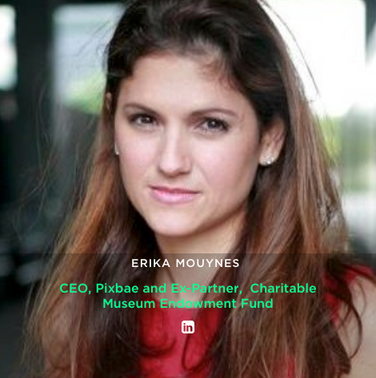 ERIKA MOUYNES  CEO, Pixbae and Ex-Partner,  Charitable Museum Endowment Fund