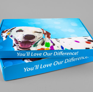 Fresh Color Dalmation sample box