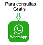 whatsapp 100.png