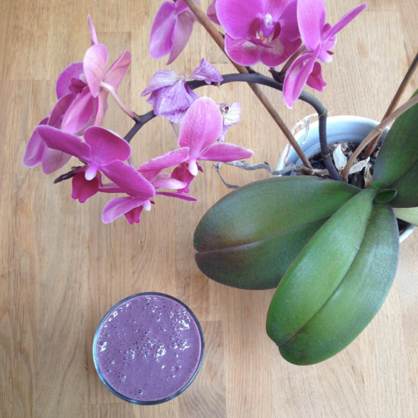 Recipe - Super Powered Berry Smoothie