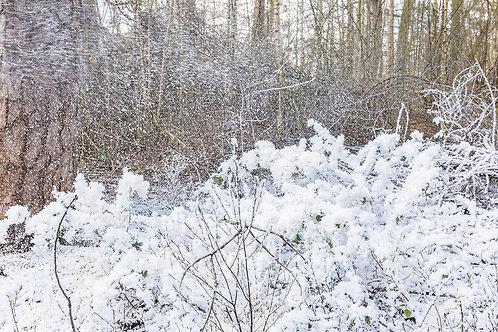 Machine a neige