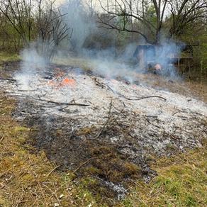 Verbrennung von pflanzlichen Abfällen