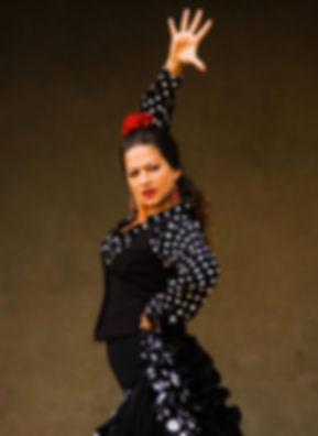 Flamenco y Sol 1_edited.jpg