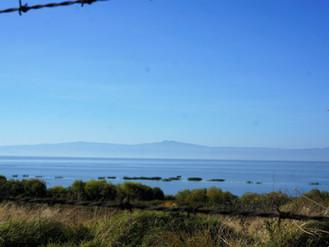 Km 27968 – Km 28002_Ocotlan – La Barca