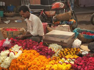 Km 13113 - Km 13187_Shahpur - Jaipur