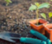 Gardening tools representing tools for calm classrooms