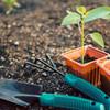 Día de la Tierra: Las 6 tendencias en consumo y modelo de negocios más sustentables