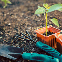 April: Get Gardening!