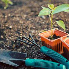 Solve a Garden Problem