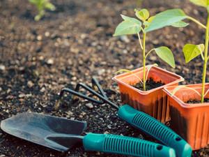 Verbeter je bodem met turf en compost.
