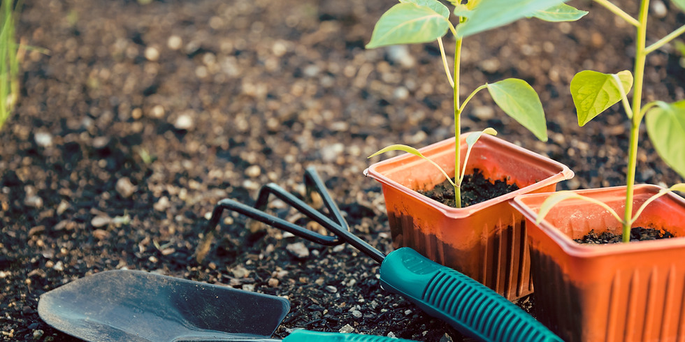 FREE Master Gardening Skills with Peter Coppola